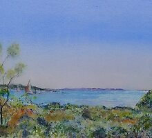 Coorong - Goolwa Way - South Australia by Kay Cunningham