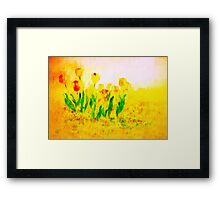 Tulips in Springtime'... Framed Print