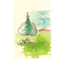 mrs peacock and her offspring Photographic Print