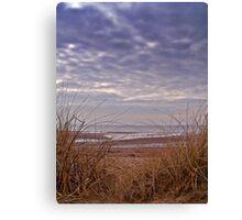 Wind Swept Beach Grass. Canvas Print
