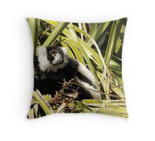 Black & White Ruffed Lemur Throw Pillow