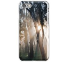 Fog Rays iPhone Case/Skin