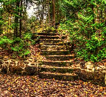 Steps to ?? by keens