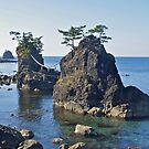 Shrine Islands near Wajima, Japan. by johnrf