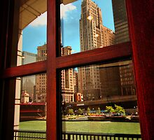 Reflecting Chicago by Barbara  Brown