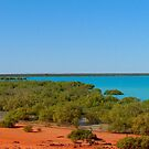 Roebuck Bay by Paige