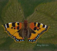 Small Tortoiseshell by Hilary Robinson