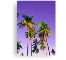Phi Phi Palm Trees Canvas Print