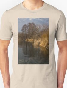 Golden Afternoon Reflections T-Shirt