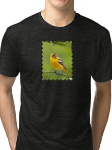 Baltimore Oriole Bird and Blooms  Tri-blend T-Shirt