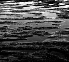 Pools of Rock by Natalie Ord