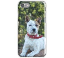 """""""Buster"""" iPhone Case/Skin"""