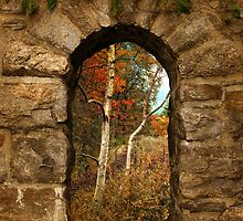 Autumn Preview by Jessica Jenney