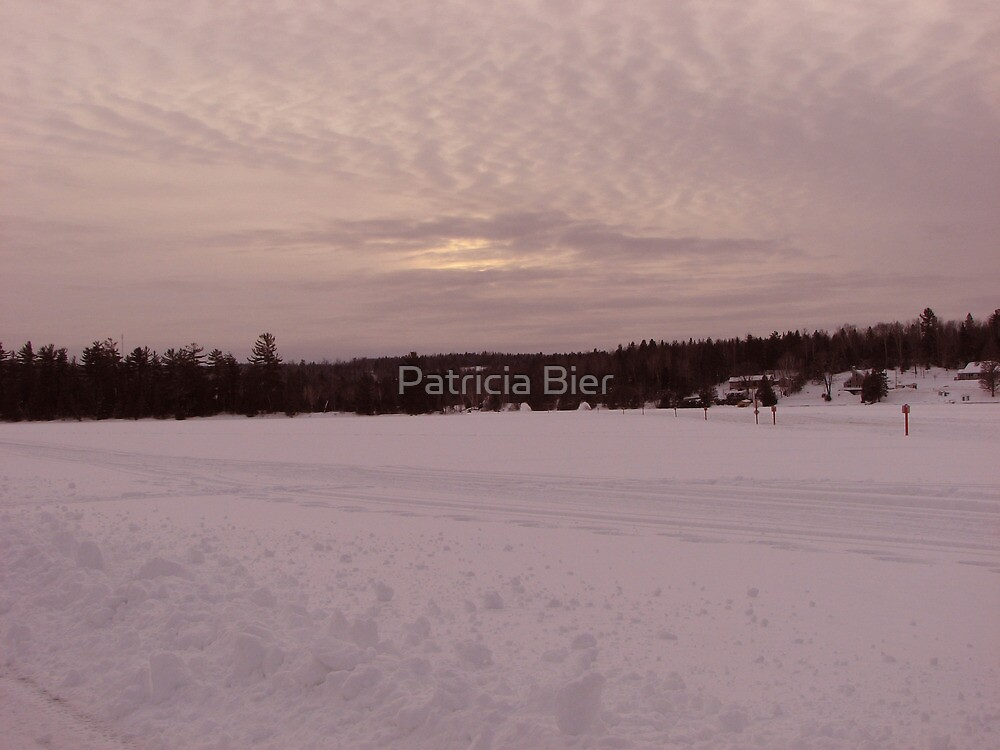 Sunset at winter by Patricia Bier