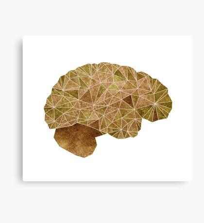 Brain: Use It! Canvas Print