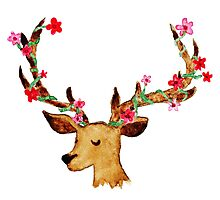 Watercolour Stag Photographic Print