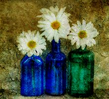 3 Bottles by Barbara Ingersoll