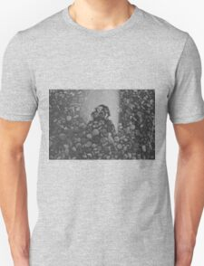 stone and mirror Unisex T-Shirt