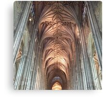 Cathedral Columns Canvas Print