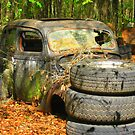 Coupe in the Woods by Debbie Robbins