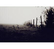 100 Photographic Print