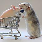 Going shopping with my friend :) by Ellen van Deelen