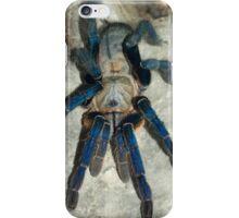 Cobalt Blue Tarantula iPhone Case/Skin