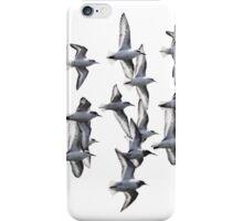Sanderlings and Dunlins in Flight iPhone Case/Skin