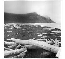 Hornstrandir driftwood Poster