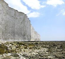 Cretaceous Cliffs, Beachy Head, England 2010 by J.D. Grubb