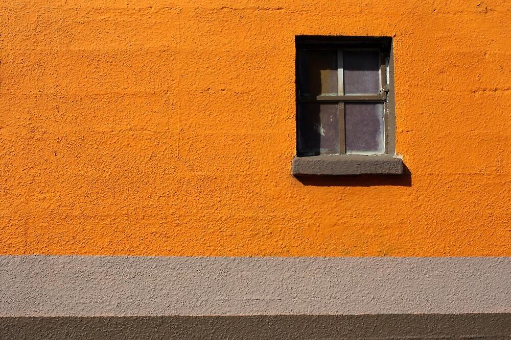 Alley Window by Forest Snowden