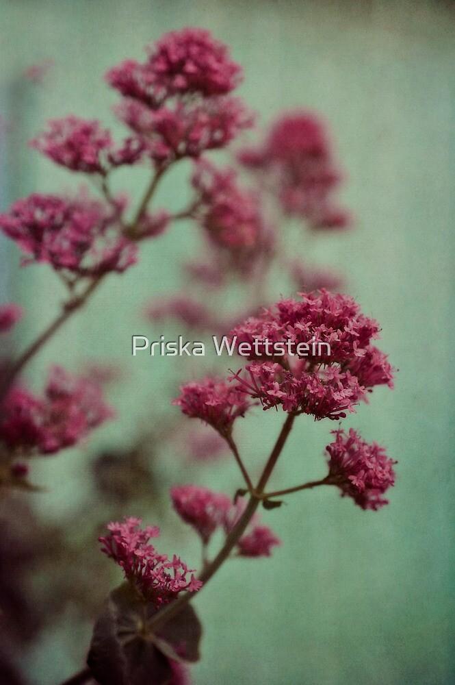 Rosy and Mintgreen by Priska Wettstein