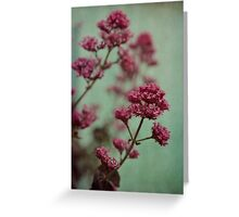 Rosy and Mintgreen Greeting Card