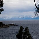 Lake Tahoe on the Nevada Side by Julie Wall