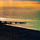 Sea of Light by Mark Snelling