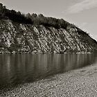 Reflections - North Saskatchewan River by Roxanne Persson