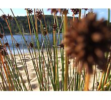 Native Rush Photographic Print