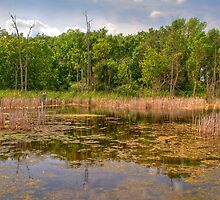 Horicon National Wildlife Refuge by ECH52