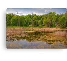 Horicon National Wildlife Refuge Canvas Print