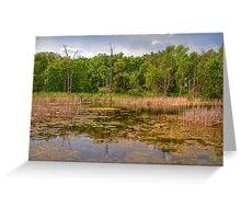 Horicon National Wildlife Refuge Greeting Card