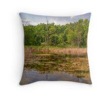 Horicon National Wildlife Refuge Throw Pillow
