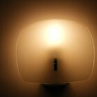 LAMP2 by gracestout2007