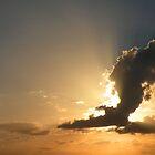 An Eagle in the Sky by Rosalie Scanlon