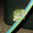 Let's Slide Down the Hose by FrogGirl