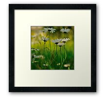 A Lover's View Framed Print