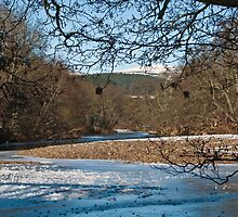 Highland Winter - River Spey (1) by ShutterBuggz