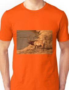 Bull Elk   #0736 Unisex T-Shirt