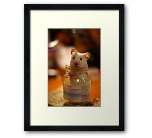 Hamster in a jar Framed Print