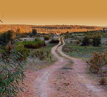 Road to nowhere by Julie Sleeman