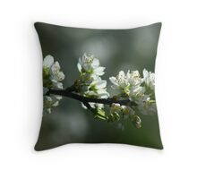 Kurrajong Cottage Gardens (No 2) Throw Pillow